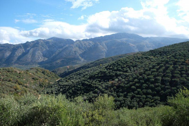 地中海に浮かぶクレタ島の魅力。観光スポットのご紹介
