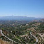 テレビでクレタ島のオリーブオイルを知りました。